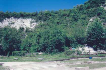 image no 35